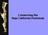 Conserving the Peninsula